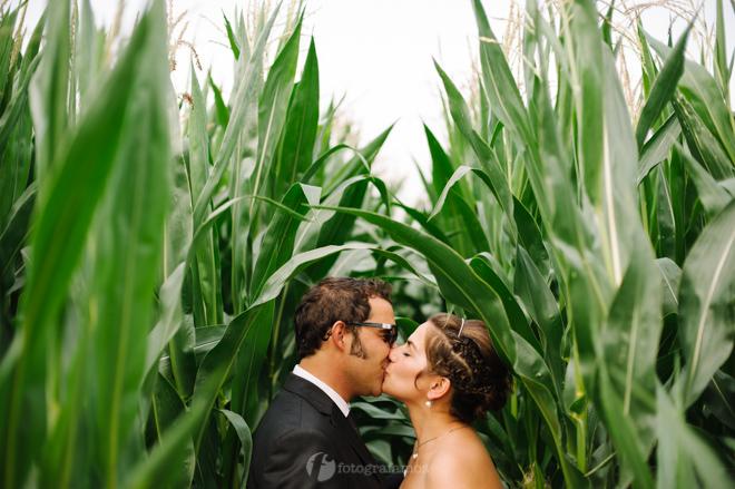 JM wed 137