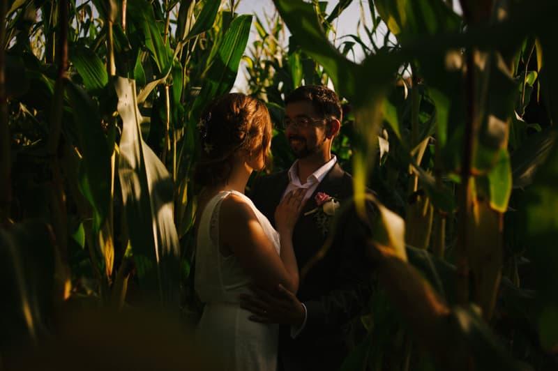 portraits in a corn field