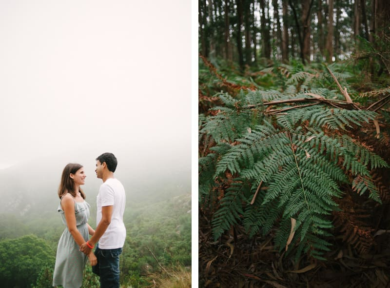 Beautiful pictures in the fog
