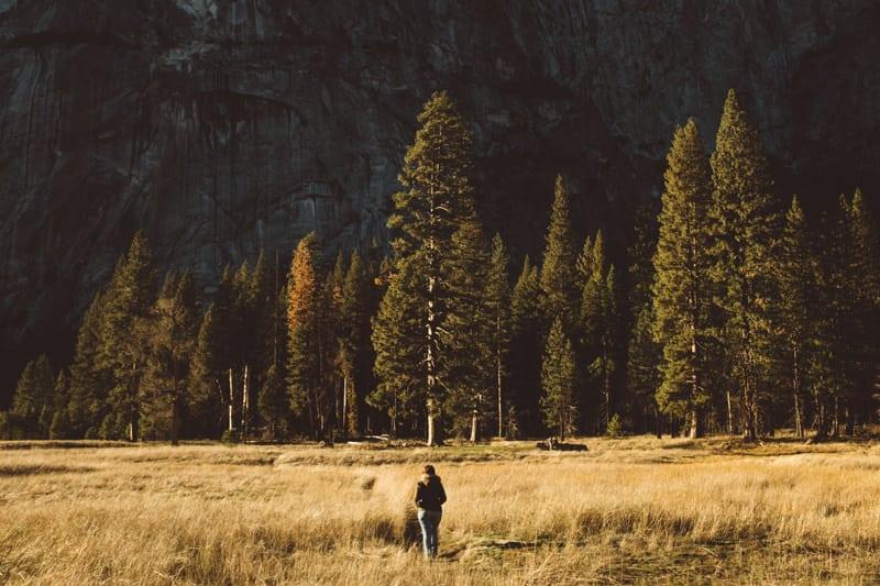 Yosemite (51 of 59)