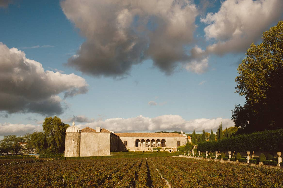 vineyard at quinta da bacalhoa wedding venue